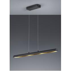 TRIO LIGHTING FOR YOU 376410402 RAMIRO, Závesné svietidlo