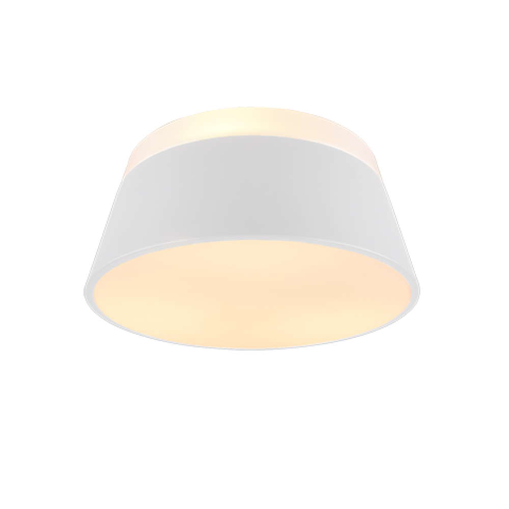 TRIO LIGHTING FOR 608900331 BARONESS, Stropné svietidlo