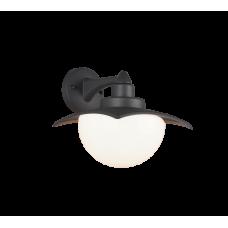 TRIO LIGHTING FOR YOU 204960142 DONEZ, Vonkajšie nástenné svietidlo