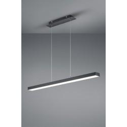 TRIO LIGHTING FOR YOU R32801132 AGANO, Závesné svietidlo