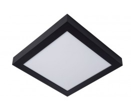 Lucide 28117/30/30 BRICE-LED, Stropné svietidlo